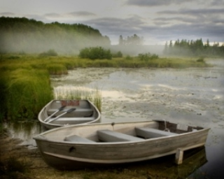 boats on the marsh