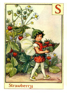 S-Strawberry