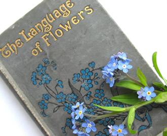 زبان گلها